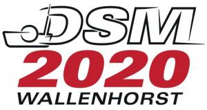 DSM_2020_final-1